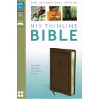 NIV Thinline Bible standard print