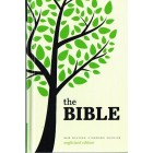 NRSV The Bible Anglicized edition