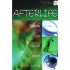 Afterlife by David A deSilva