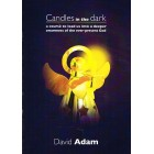 Candles in the Dark by David Adams